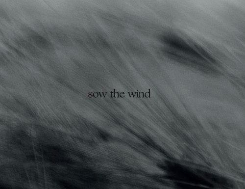 zugabe – sow the wind (2019, Autoprodotto)